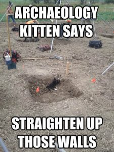 archaeology-kitten