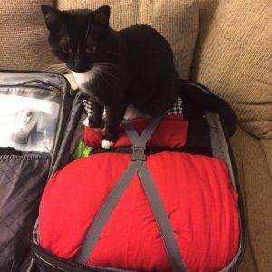 lilli-suitcase