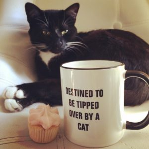 Destined to be Tipped Over By A Cat Mug http://www.zazzle.com/destined_to_be_tipped_over_by_cat_mug-168626661999439613?rf=238049100805885014