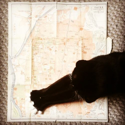 Lilliput cat map victorian stretch helpful vintage cairo egypt