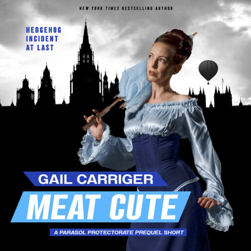 Meat Cute Audiobook Cover Art Hedgehog Incident