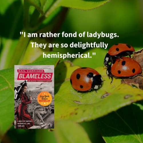 Quote Blameless Ladybugs Round