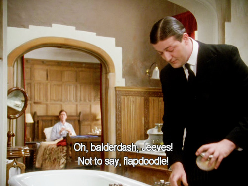 Flapdoodle Jeeves Wooster Wodehouse